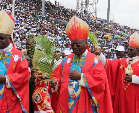 opt cardinal IMG_282